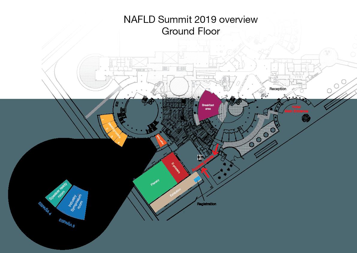 NAFLD Summit 2019 overview